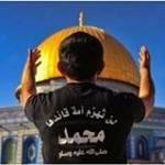 Ahmed Abd Elshakour Profile Picture