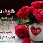 Alaa Abu omer Profile Picture