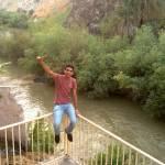 محمود بشتاوي Profile Picture